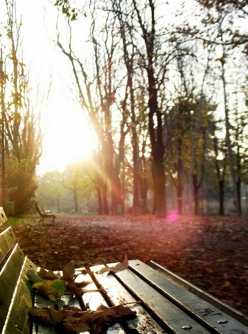 Outono no Parco Sempione