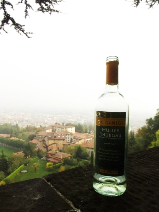 Wine on the edge of the old walls