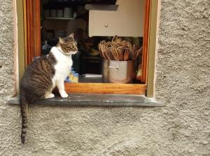Windown in Cinque Terre